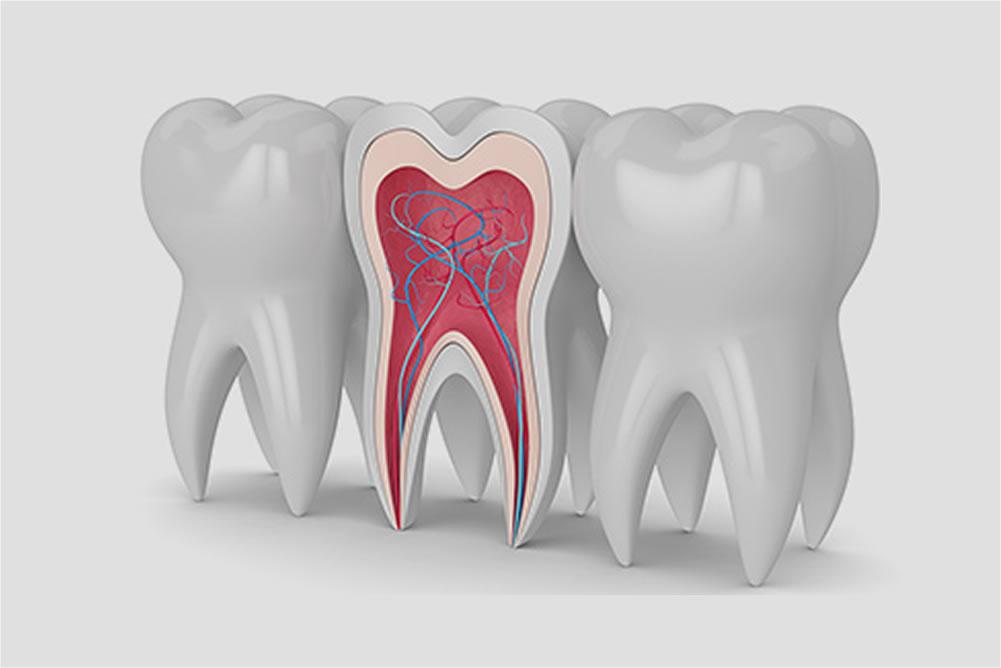 歯の神経への刺激イメージ