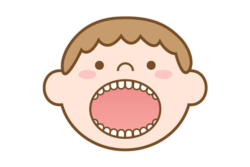 乳歯が永久歯に生え変わり始めた時